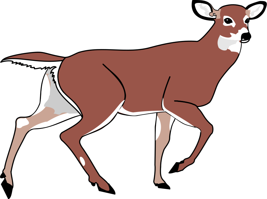 900x670 Deer Clip Art Black And White Free Clipart Images