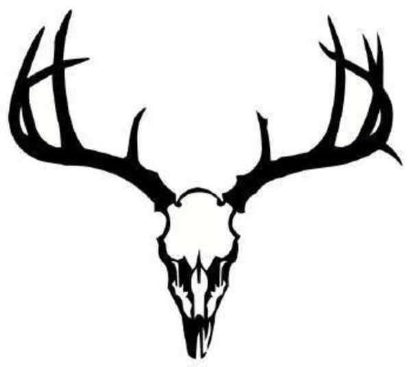 600x535 Deer Antler Clip Art Use These Free Images For Your Websites