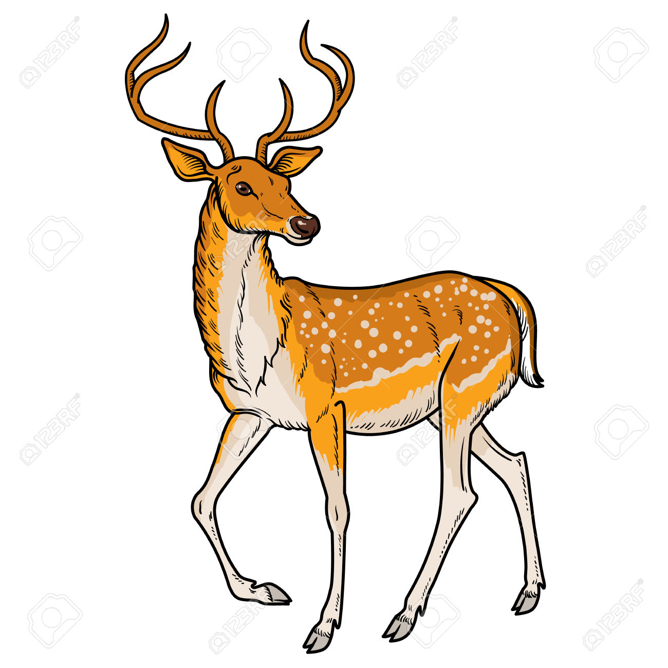 1300x1300 Deer Clipart Elegant