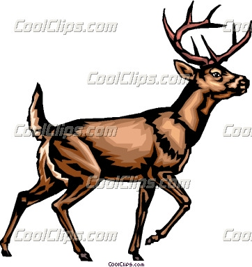 362x383 Whitetail Deer Clipart Black And White Clipart Panda