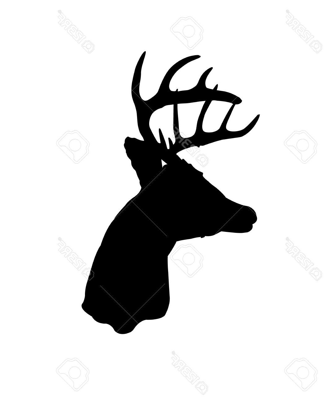 1077x1300 Best Hd Black Silhouette Of Whitetail Deer Clip Art Stock Vector