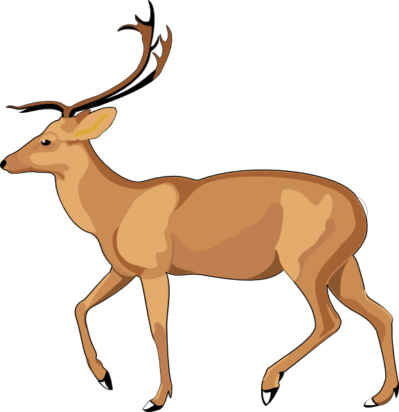 576x595 Top 88 Gazelle Clip Art