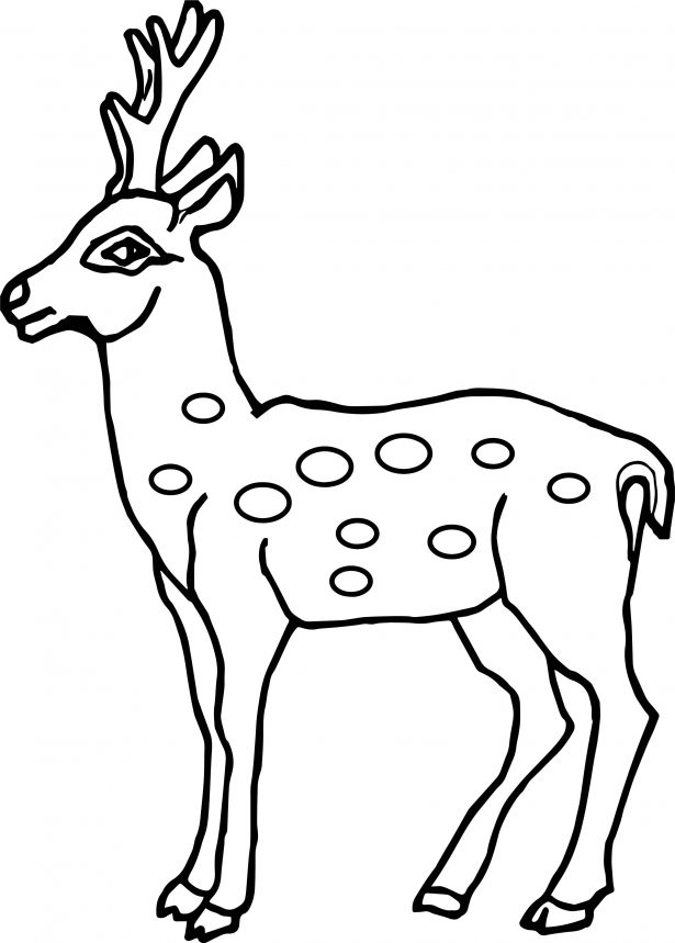 615x859 Coloring Pages Animals Deadpool All Is Ok Coloring Page Deer