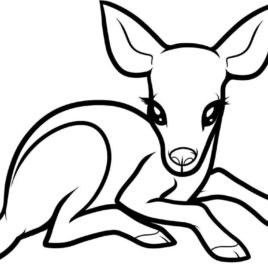 268x268 Coloring Pages Baby Deer Kids Drawing And Coloring Pages