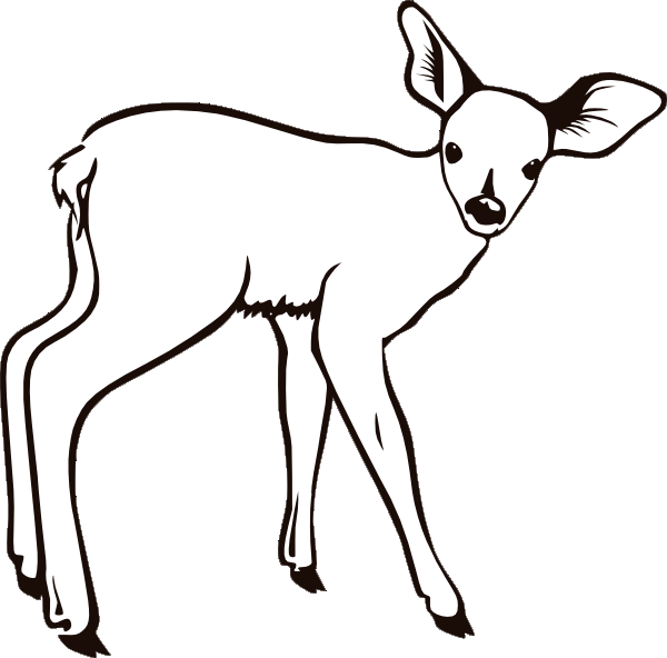 600x592 Deer Coloring Pages 3 Coloring Pages To Print