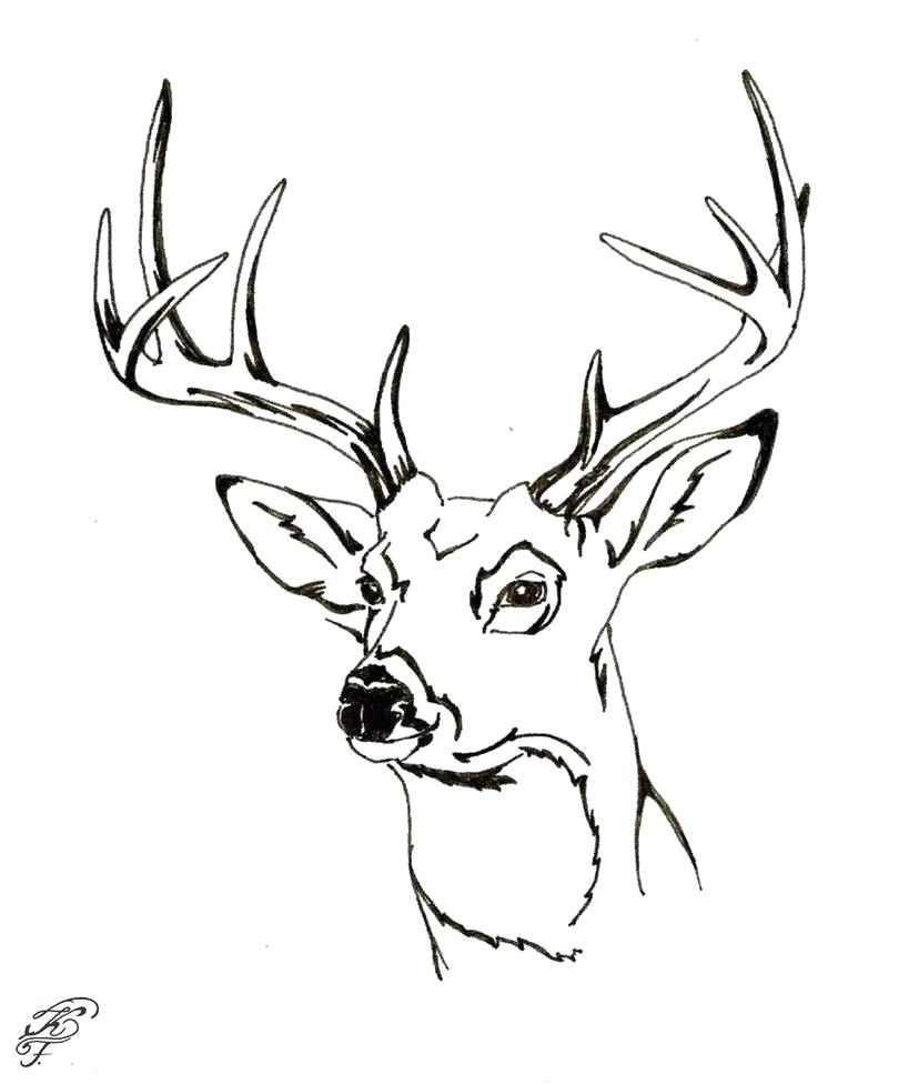 819x976 Free Printable Deer Coloring Pages For Kids Within Sheets Head
