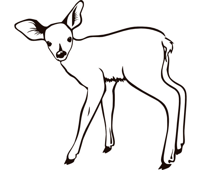 700x592 Top 91 Deer Coloring Pages