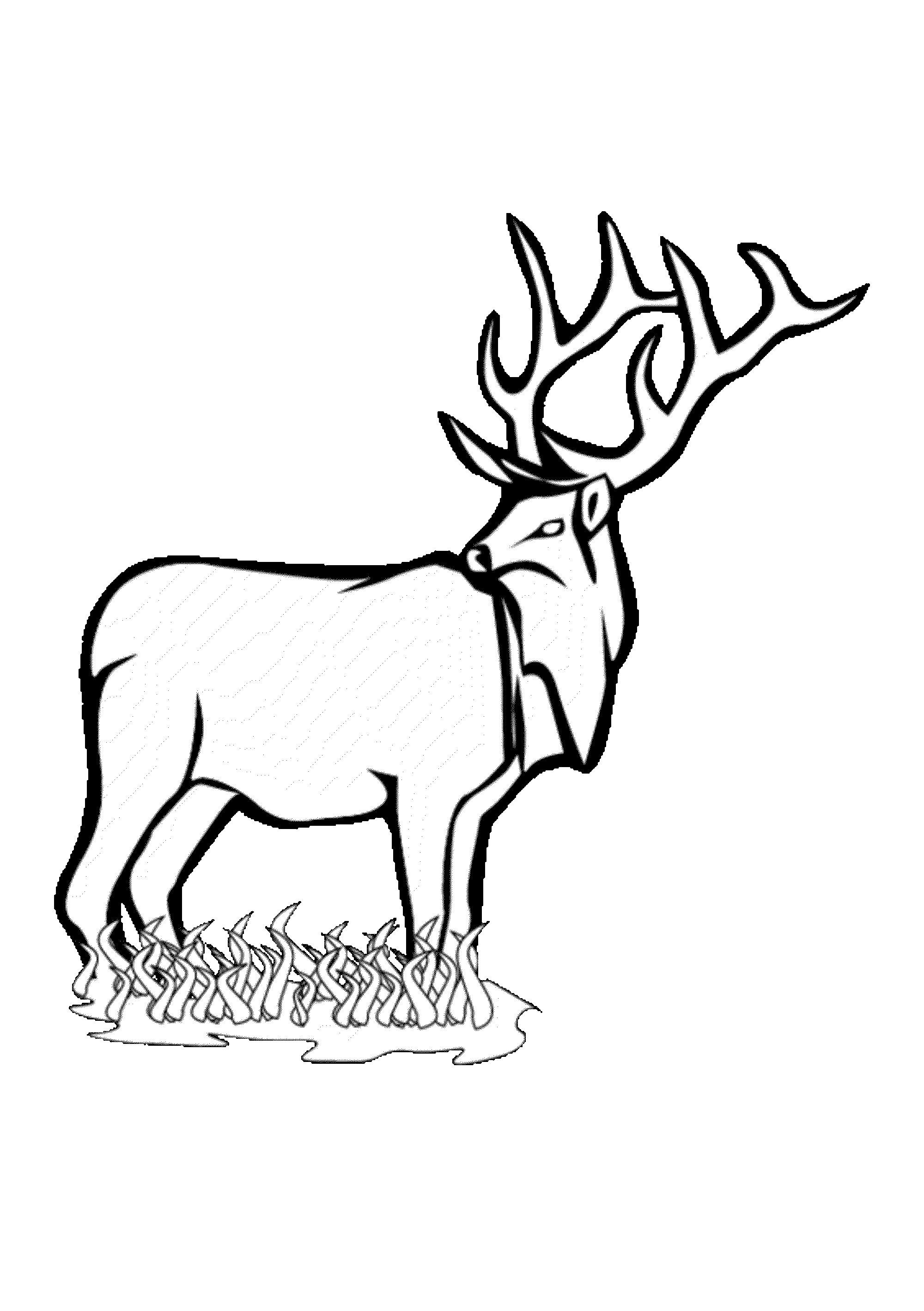 2000x2837 Deer Coloring Pages For Kids