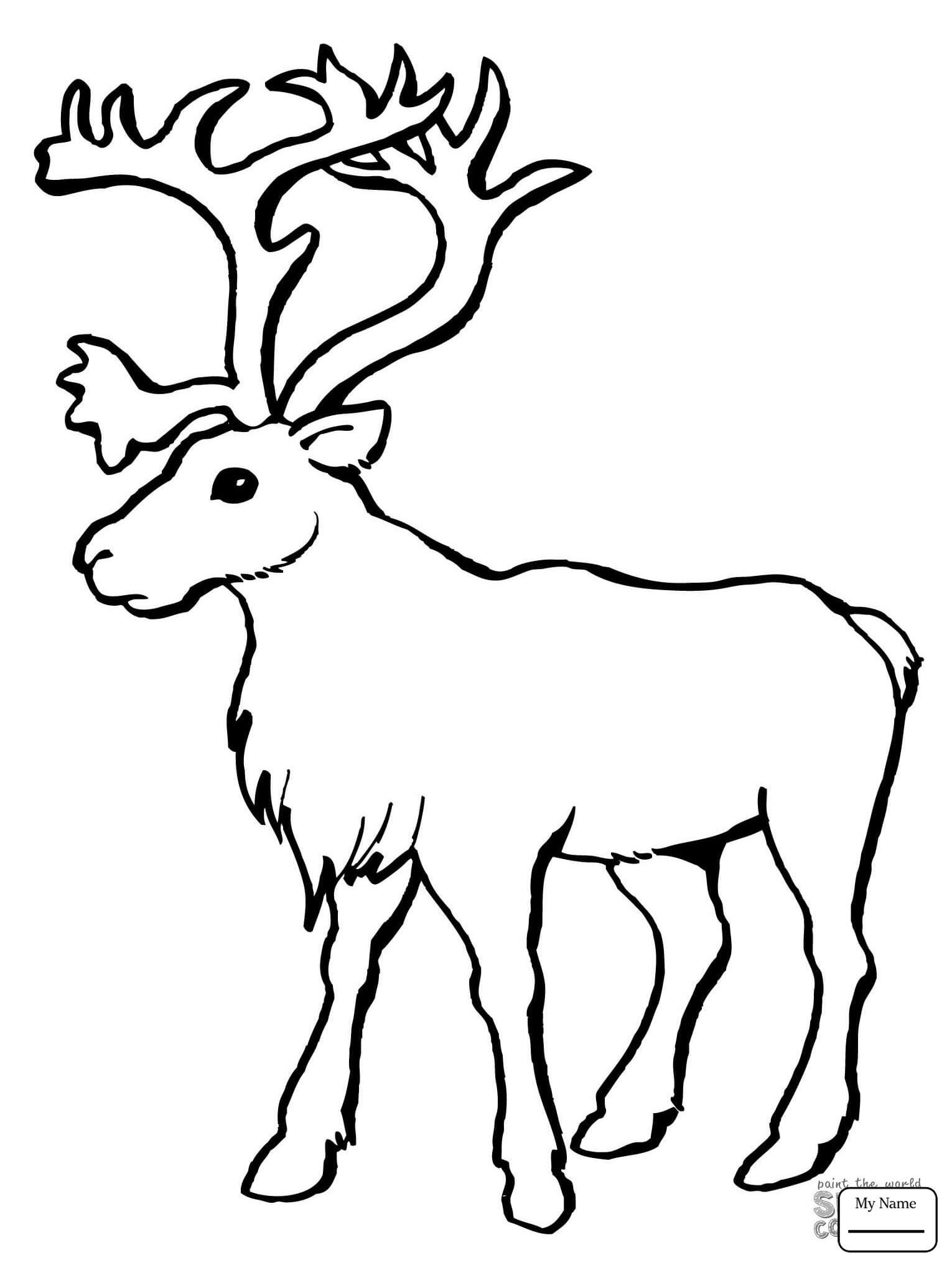 1530x2040 Mammals Caribou Deer Reindeer Coloring Pages