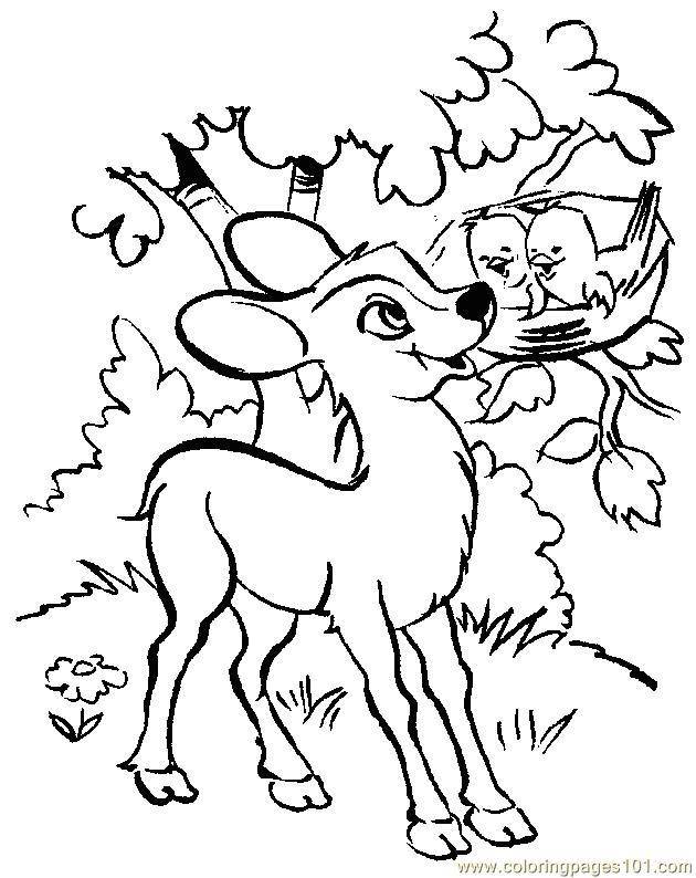 630x794 Baby Deers Coloring Page
