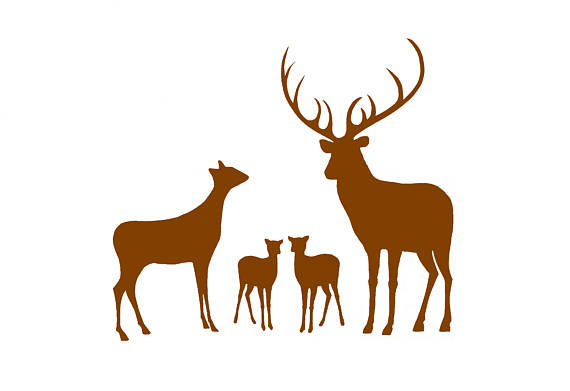 570x391 Deer Family Two Babies Three Children.two Fawns. Art