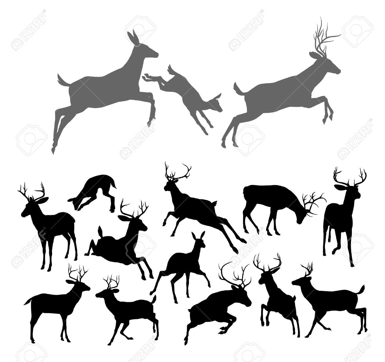 1300x1222 Deer Silhouettes Including Fawn, Doe Bucks And Stags In Various