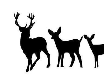 340x270 Deer Clipart Deer Family