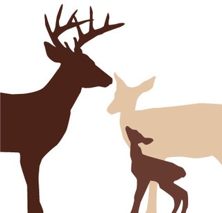 320x308 64 Best Silhouettes Images Cake Ideas, Deer