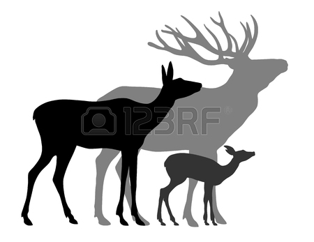 450x347 A Silhouette Of Roe Deer Cub Royalty Free Cliparts, Vectors,