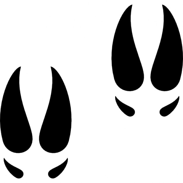 626x626 Moose Clipart Footprint