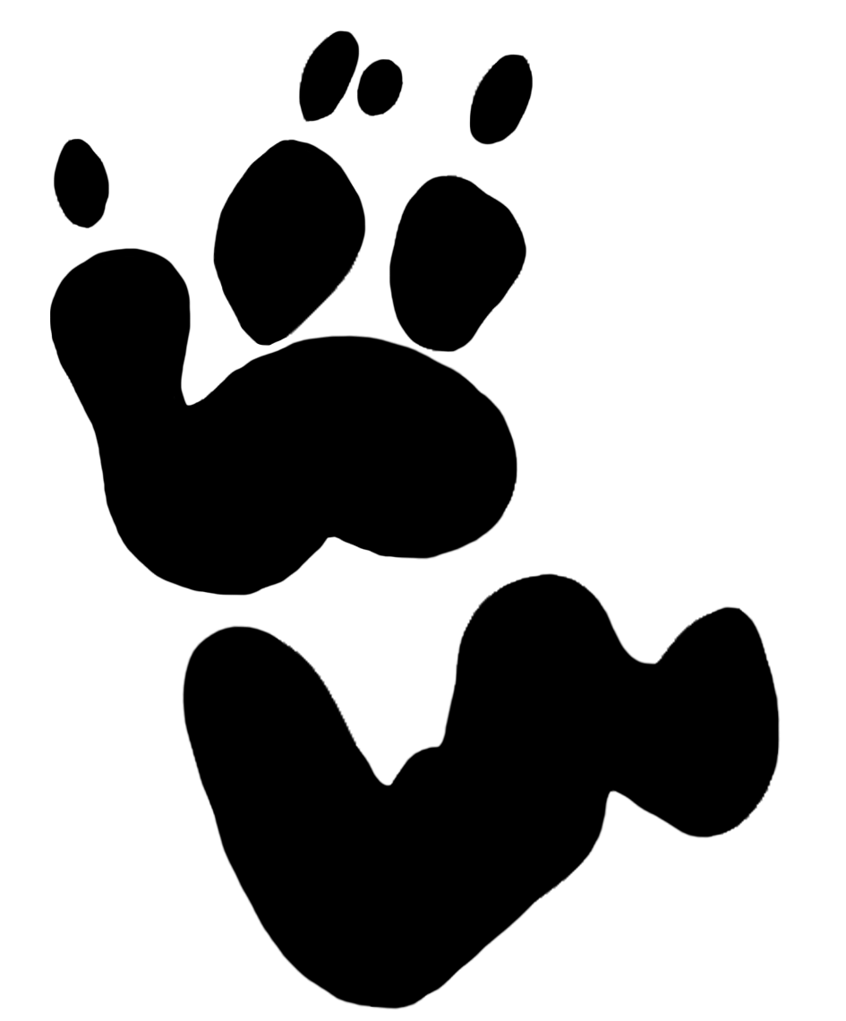 945x1140 Rhino Clipart Footprint