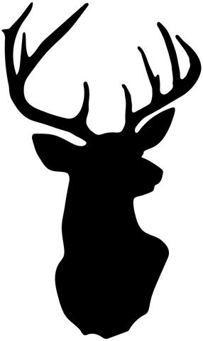 286x480 Metallic Gold Deer Head Trophy Vinyl Wall Decal Wall Dressed Up