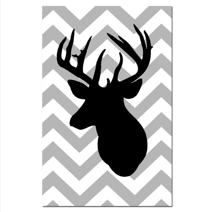 736x736 White Tailed Deer Clipart Stag Head