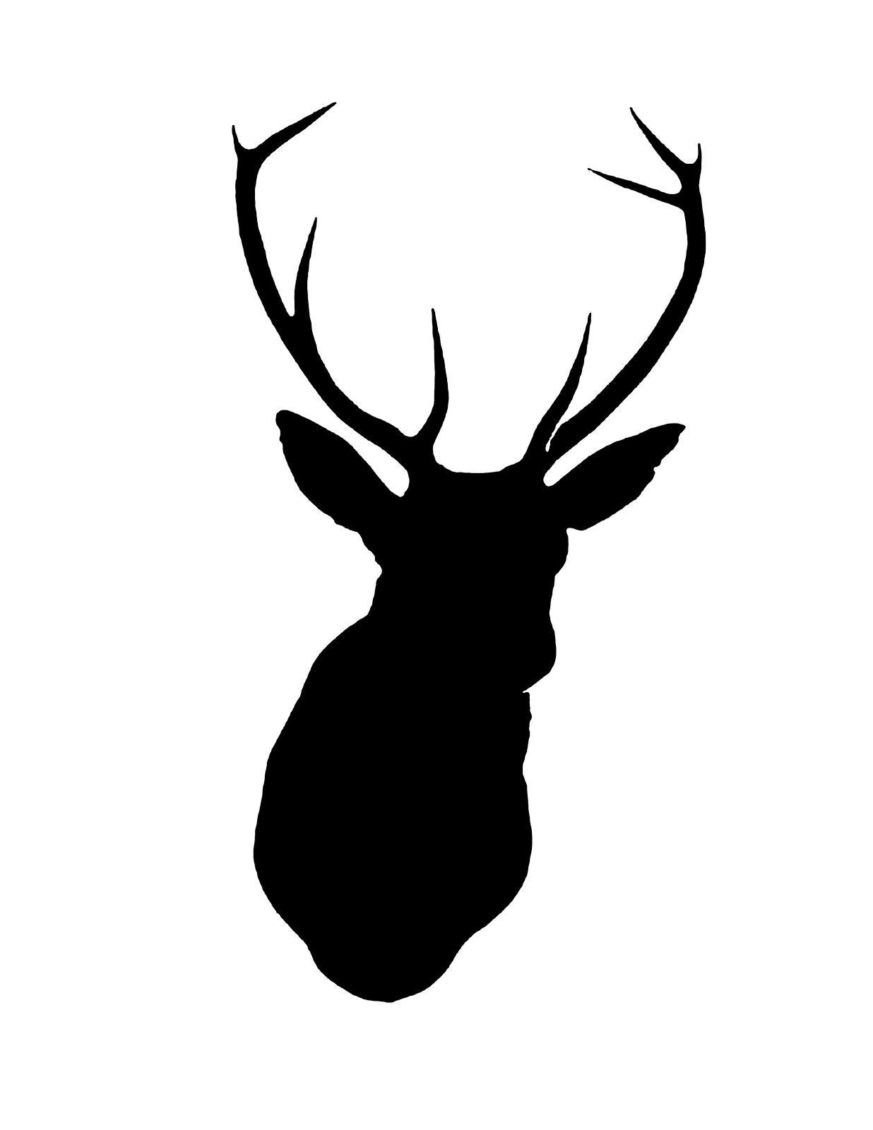 1236x1600 Best Drawing Deer Head Template Vector Pictures Free Vector Art