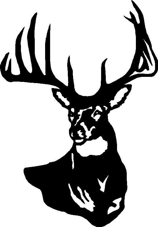 536x768 Deer Clipart Bust