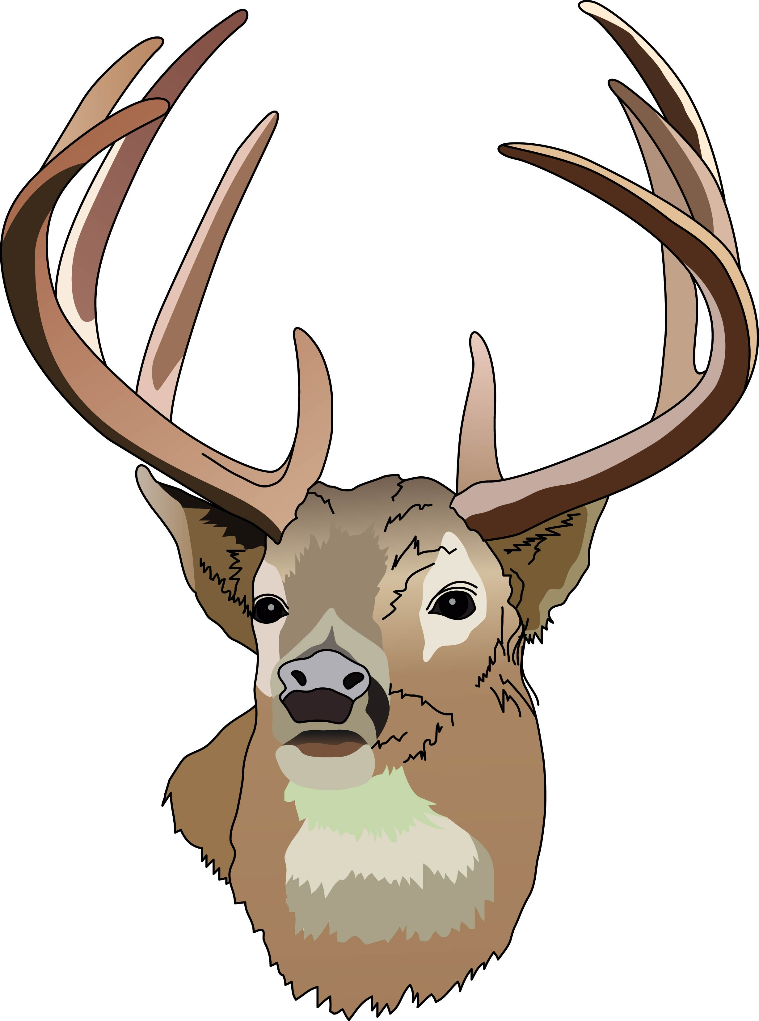 2457x3305 Deer Head Clip Art