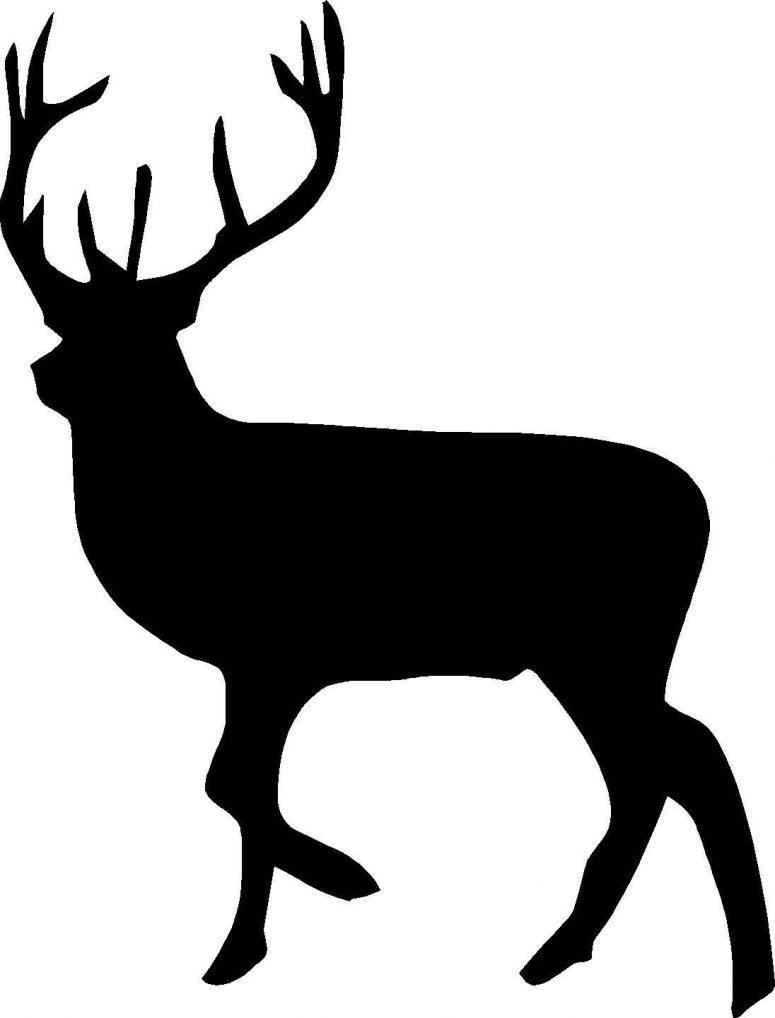 775x1018 Top Baby Deer Bust Silhouette Cdr