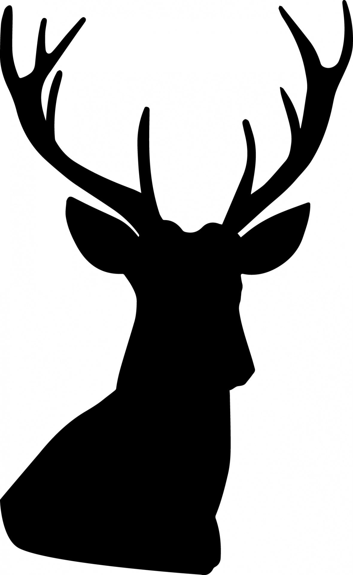 1180x1920 Buck Clipart Deer Silhouette