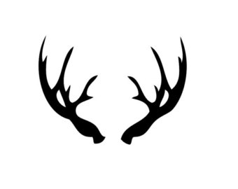 340x270 Deer Antler Clip Art