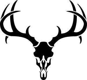 300x274 Best Deer Skull Drawing Ideas Deer Skulls