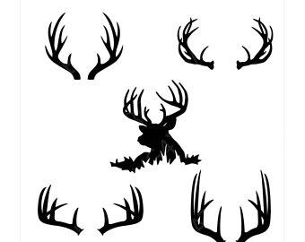 340x270 Deer Horns Etsy