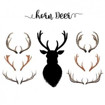 338x338 Wildlife Clipart Deer Horn