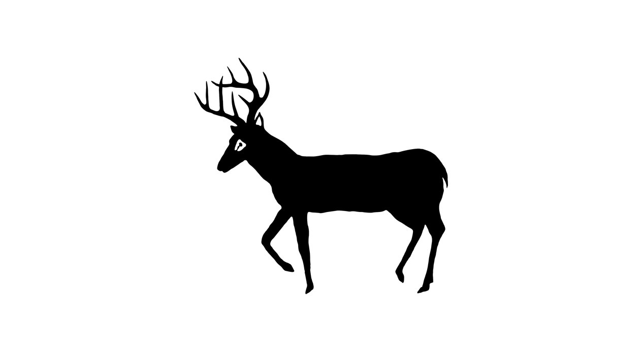1264x694 Willow Deer Clipart