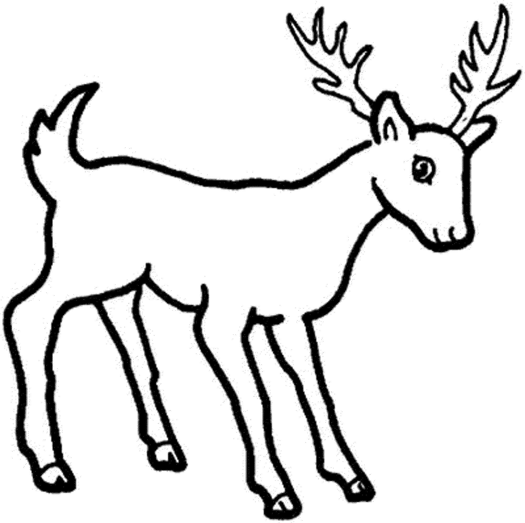 2000x1990 Cartoon Deer Coloring Pages