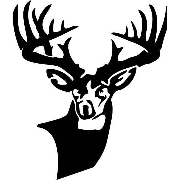 600x600 Deer Buck Drawings Black And White Mossyback Woods Monster