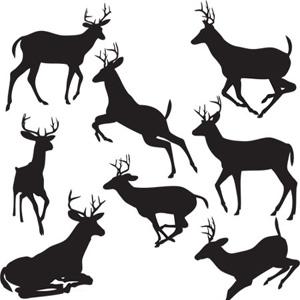 300x300 Black Deers Vector Download Cricut Svg Files