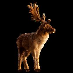 250x250 Deer Png Images