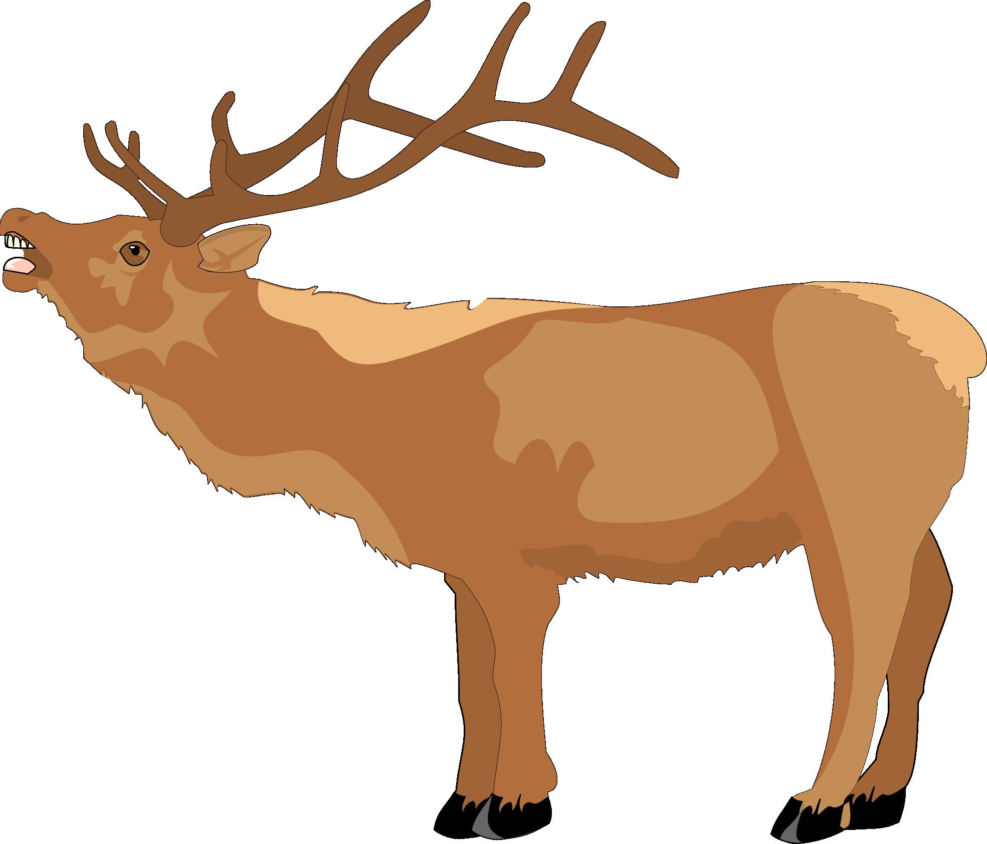1969x1683 Reindeer Clipart Scene