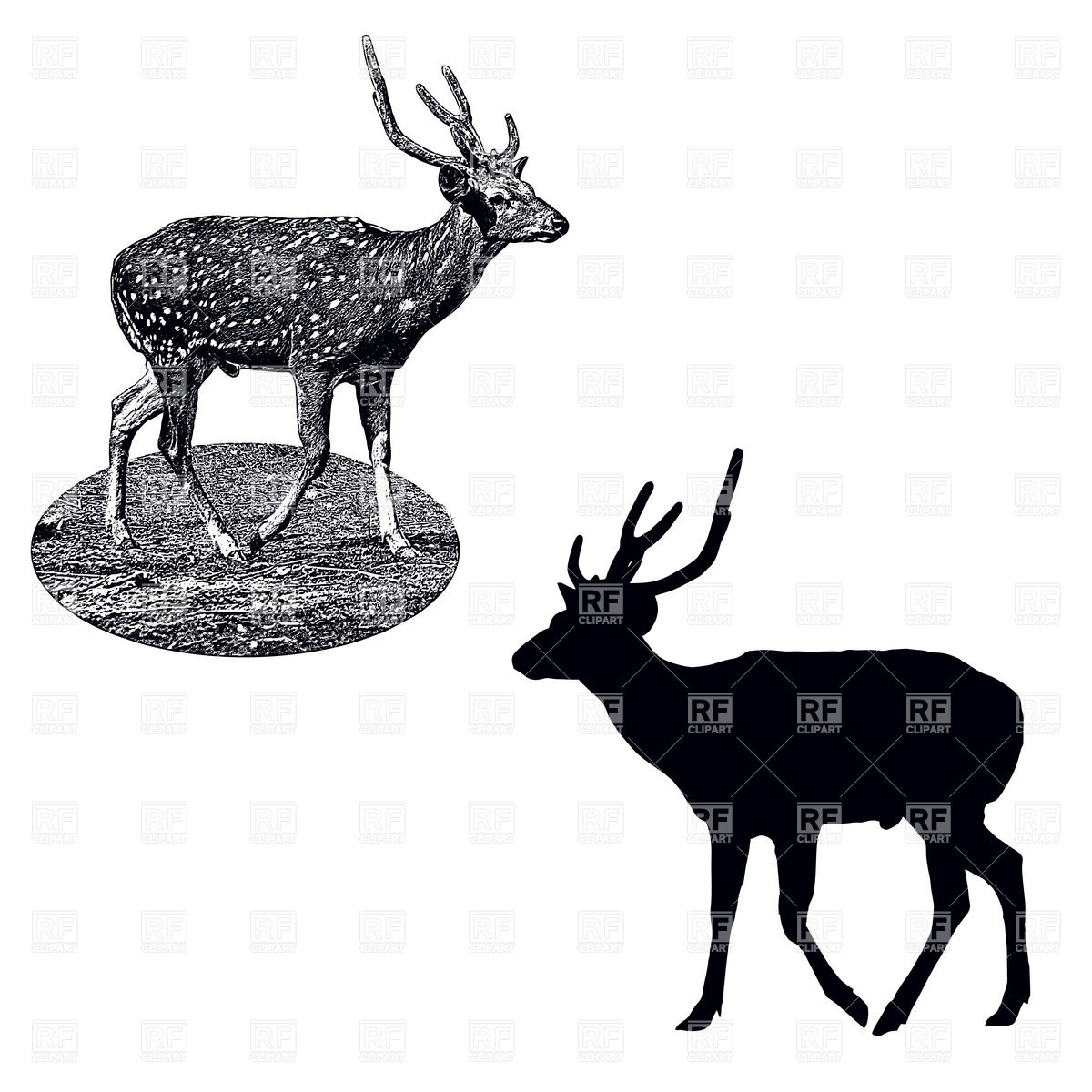 1200x1200 Silhouette And Shading Style Profile Of Male Of Spotted Deer