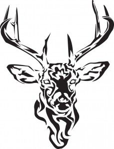 229x300 Deer Skull Drawings Images Of Deer Skull Clip Art Pictures