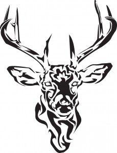 229x300 Deer Skull Drawings Images Of Deer Skull Clip Art Pictures