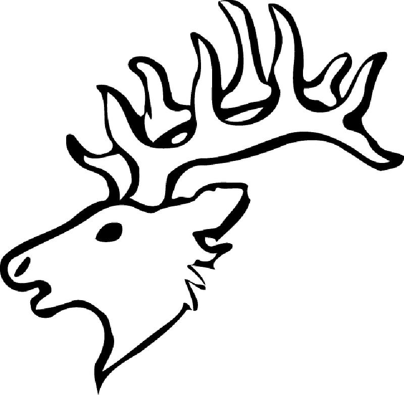 800x783 Head, Silhouette, Face, Skull, Cartoon, Deer, Heads