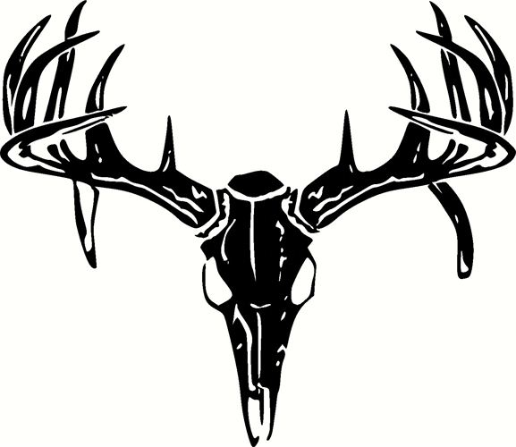 577x500 Deer Skull Decal Deer Skull