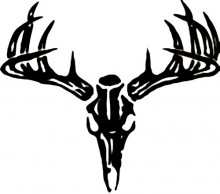 220x194 Deer Skull Wall Decal
