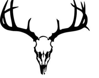340x270 Deer Skull Decal Etsy