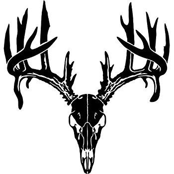 350x350 Deer Skull Car Decal Sticker Automotive