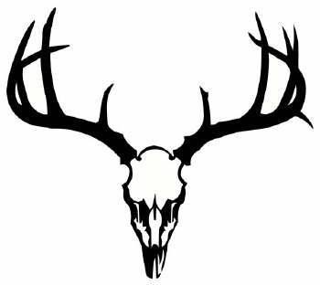 350x312 Deer Skull Free Images