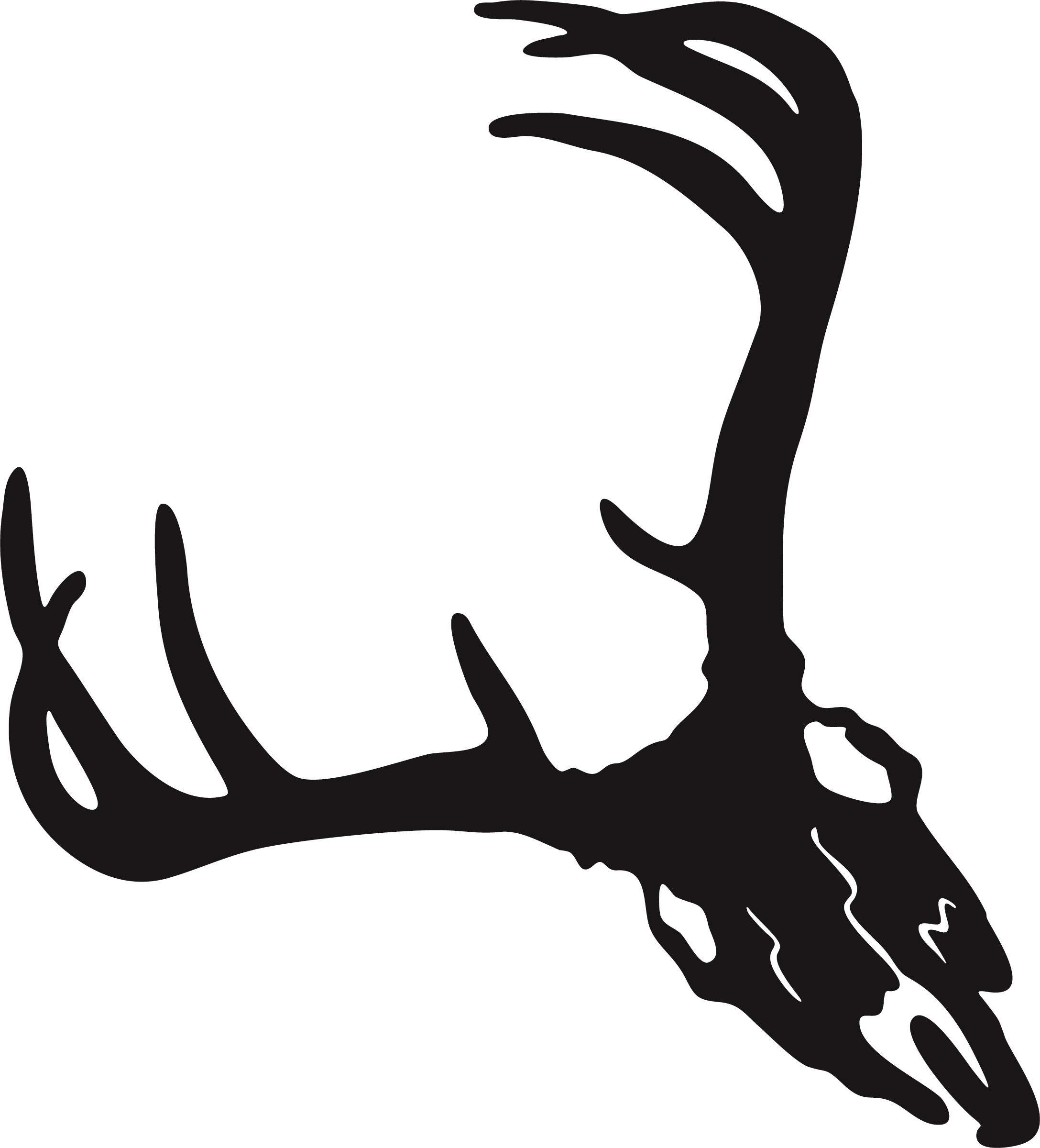2175x2400 Deer Skull 5 By