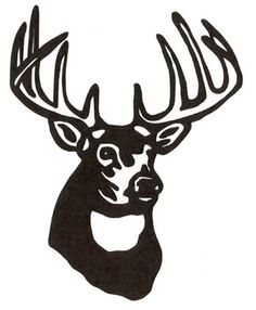 236x286 Deer Skull Drawing