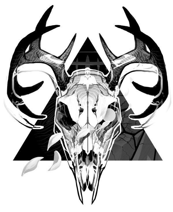 600x737 Images Deer Skull Drawing Tumblr